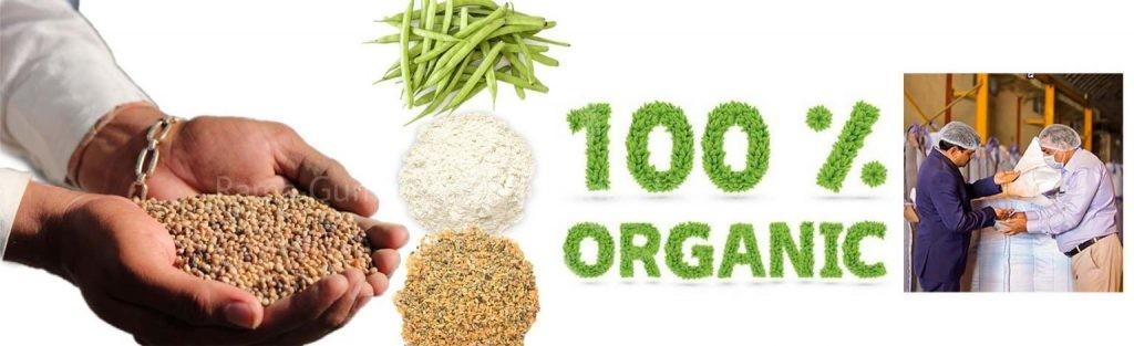 Ricol Organic Guar gum powder